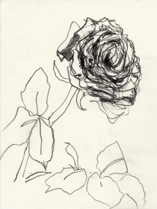 Rose 140