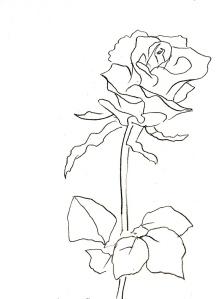 Rose183